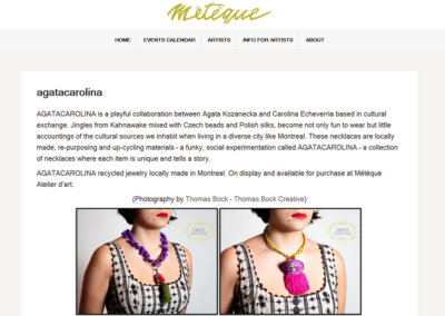 Meteque Website image1