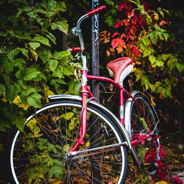 Plateau Bike