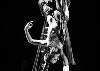 Dance Chicago, Dances From the Heart - Aerial Dance Chicago